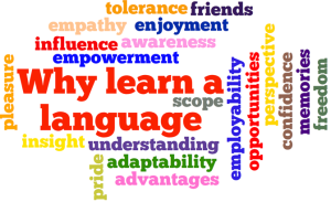 why_learn_a_language